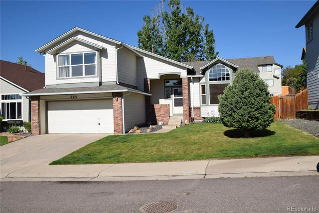 6571 S Tabor Street, Littleton, CO 80127 (#9817231) :: Re/Max Structure