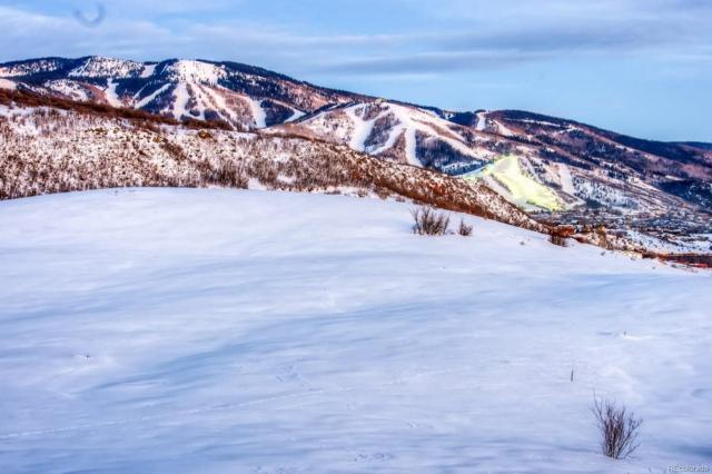 Indian Trails, Steamboat Springs, CO 80487 (MLS #9818218) :: 8z Real Estate