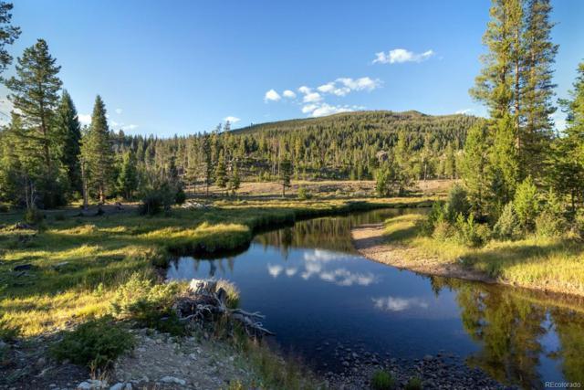 Tonahutu Drive, Grand Lake, CO 80447 (#9818916) :: The Peak Properties Group