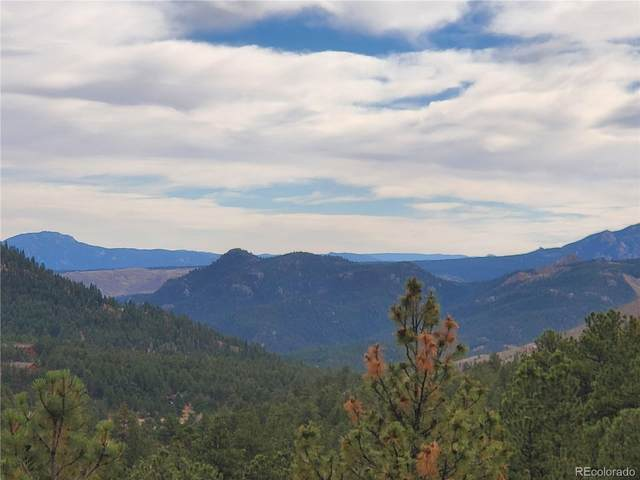 6 Turret Peak Trail, Pine, CO 80470 (#9821128) :: Berkshire Hathaway Elevated Living Real Estate