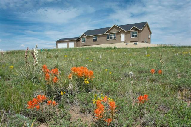 13820 Noah Abel Point, Calhan, CO 80808 (MLS #9821299) :: 8z Real Estate