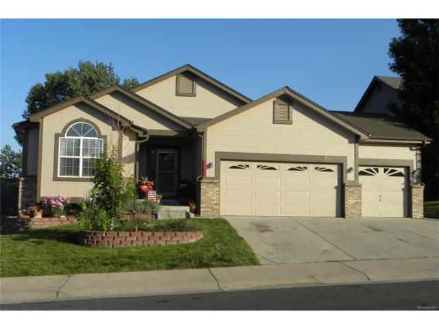 1308 Rosemary Drive, Castle Rock, CO 80109 (#9824284) :: RE/MAX Professionals