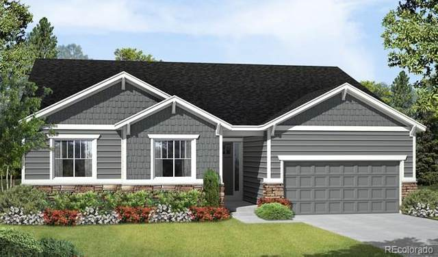6695 Petunia Place, Castle Rock, CO 80108 (MLS #9825074) :: 8z Real Estate