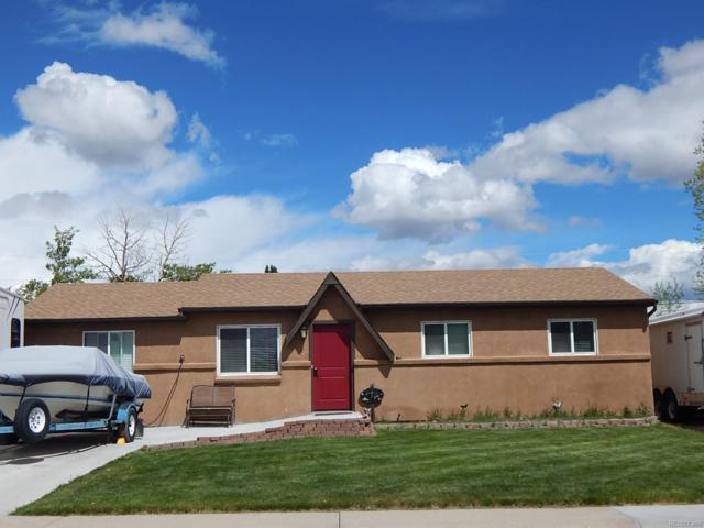109 Cornell Drive, Buena Vista, CO 81211 (#9825620) :: Colorado Home Finder Realty