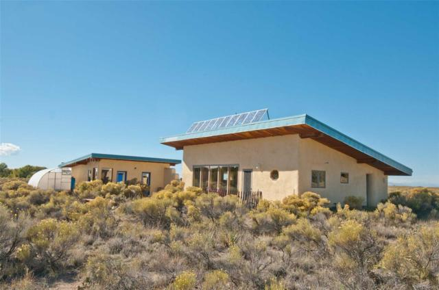 537 Thornwood Trail, Crestone, CO 81131 (MLS #9827212) :: 8z Real Estate