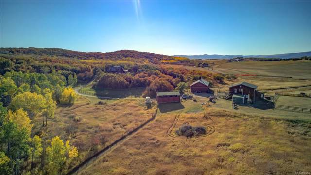 33250 Macday Lane, Steamboat Springs, CO 80487 (MLS #9827935) :: 8z Real Estate