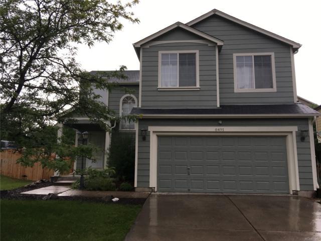 8491 Sweet Clover Way, Parker, CO 80134 (#9828503) :: Bring Home Denver