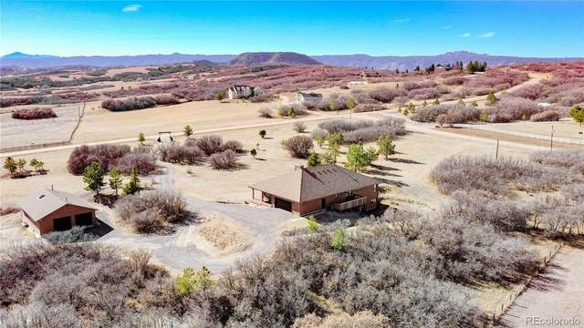 571 Twin Oaks Road, Castle Rock, CO 80109 (#9829019) :: The Dixon Group