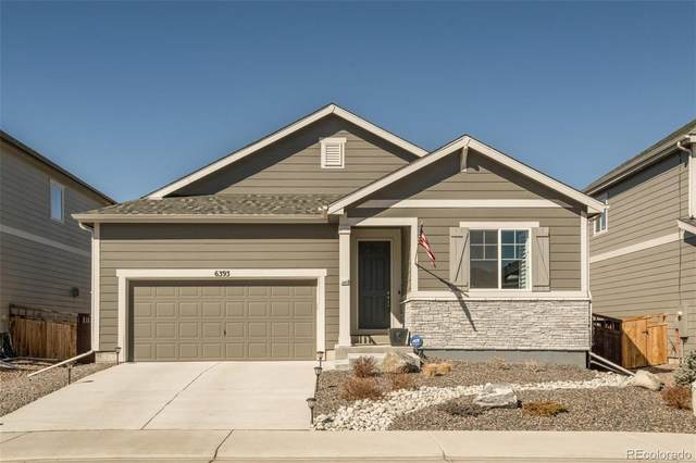 6393 Agave Avenue, Castle Rock, CO 80108 (#9830274) :: iHomes Colorado