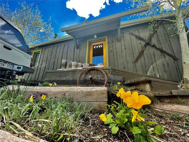 230 3rd Street 1/4, Fairplay, CO 80440 (#9832157) :: Finch & Gable Real Estate Co.