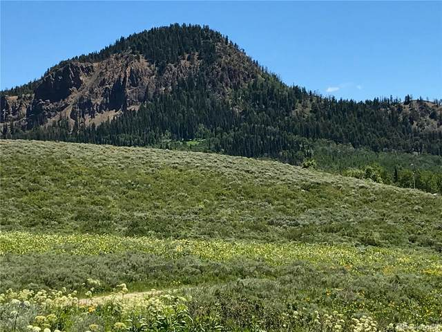 967 Gcr 283, Kremmling, CO 80459 (MLS #9833935) :: 8z Real Estate