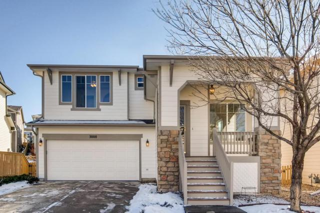 3000 Redhaven Way, Highlands Ranch, CO 80126 (#9836095) :: Bring Home Denver