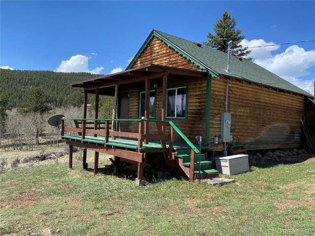 70 Fawn Drive, Bailey, CO 80421 (#9837650) :: Wisdom Real Estate