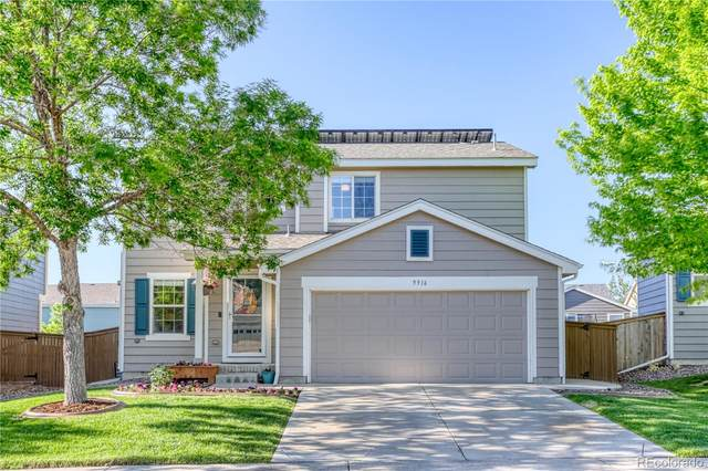 9916 Saybrook Street, Highlands Ranch, CO 80126 (#9838069) :: HomeSmart Realty Group