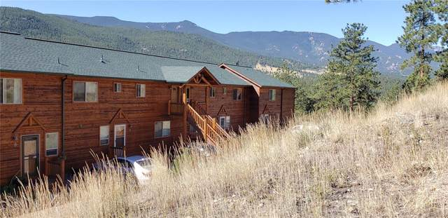 303 Virginia Road B, Bailey, CO 80421 (MLS #9839850) :: 8z Real Estate