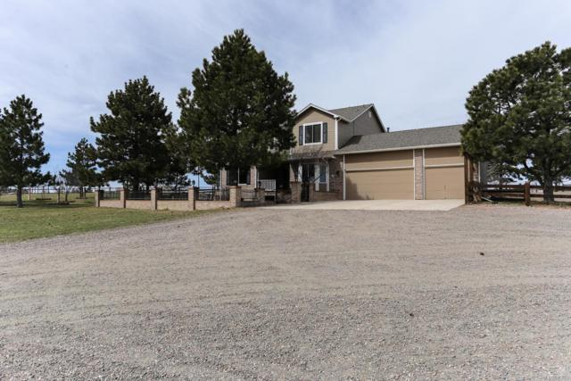 42745 Pearson Ranch Loop, Parker, CO 80138 (#9843406) :: Wisdom Real Estate