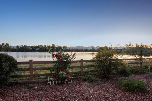 6900 W Grant Ranch Boulevard #34, Denver, CO 80123 (#9847898) :: The Peak Properties Group