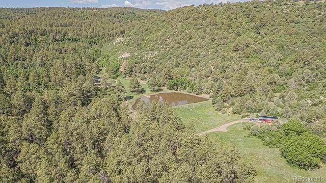 33089 Lodgepole Trace, Trinidad, CO 81082 (#9849957) :: iHomes Colorado