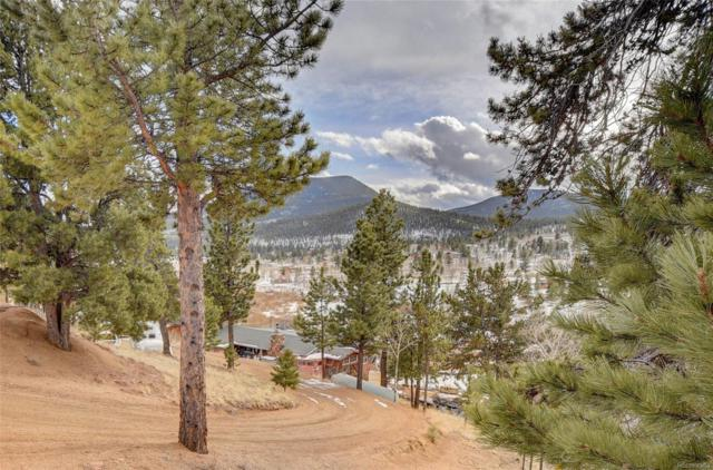 00 County Road 43, Bailey, CO 80421 (#9855629) :: The City and Mountains Group