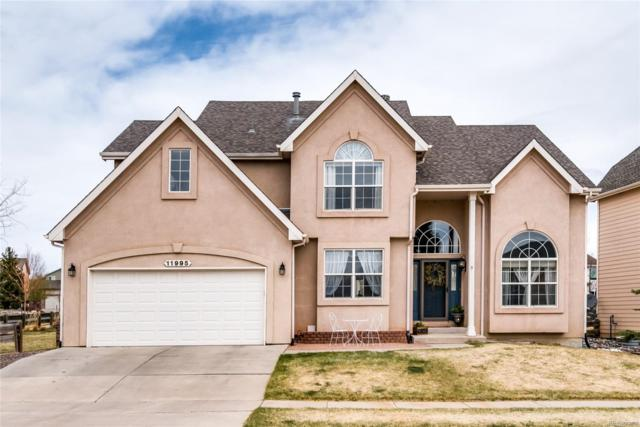 11995 Hanging Valley Way, Colorado Springs, CO 80921 (#9856075) :: The DeGrood Team