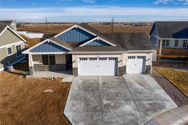 1022 Grand Avenue, Windsor, CO 80550 (#9858426) :: Bring Home Denver with Keller Williams Downtown Realty LLC