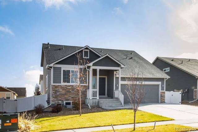 2318 77th Avenue, Greeley, CO 80634 (MLS #9858522) :: 8z Real Estate