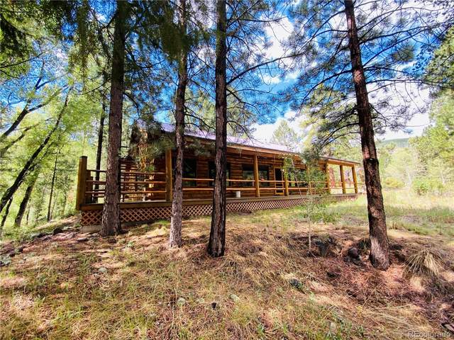 6 E Peregrine, Antonito, CO 81120 (MLS #9860030) :: Find Colorado