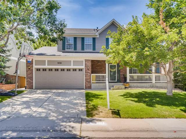 9729 Newcastle Drive, Highlands Ranch, CO 80130 (MLS #9860264) :: 8z Real Estate