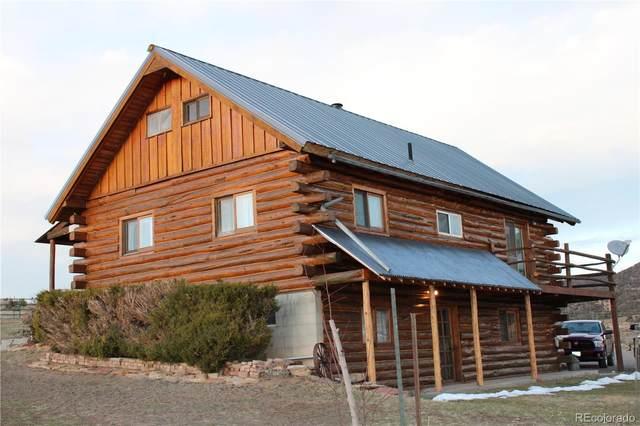 67 Sandstone Drive, Meeker, CO 81641 (MLS #9860547) :: 8z Real Estate