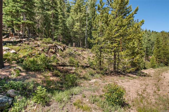 10229 Christopher Drive, Conifer, CO 80433 (#9864468) :: The DeGrood Team