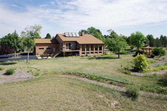11674 Tomichi Drive, Franktown, CO 80116 (#9865179) :: The DeGrood Team