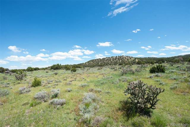 34002 County Road 0 Road, Pritchett, CO 81064 (#9865594) :: The DeGrood Team