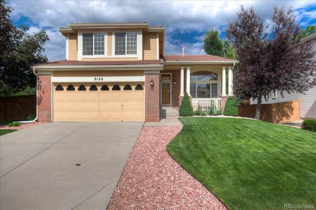 9168 Roadrunner Street, Highlands Ranch, CO 80129 (#9865989) :: The Colorado Foothills Team | Berkshire Hathaway Elevated Living Real Estate
