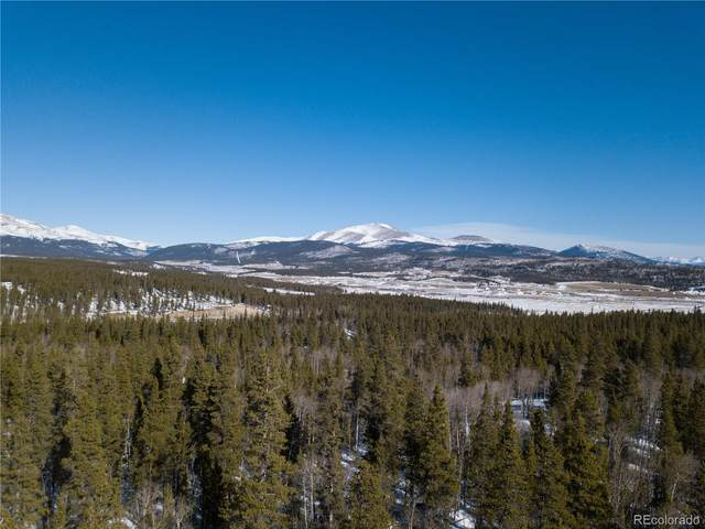 0 Larry's Road, Fairplay, CO 80440 (#9867088) :: Mile High Luxury Real Estate