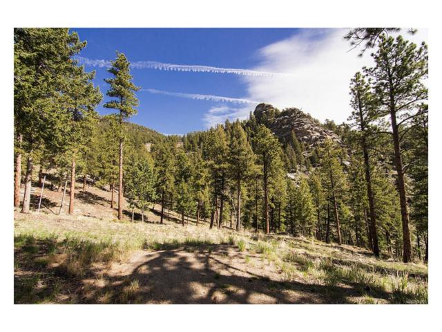 560 Crystal Ridge Road, Evergreen, CO 80439 (MLS #9872762) :: 8z Real Estate