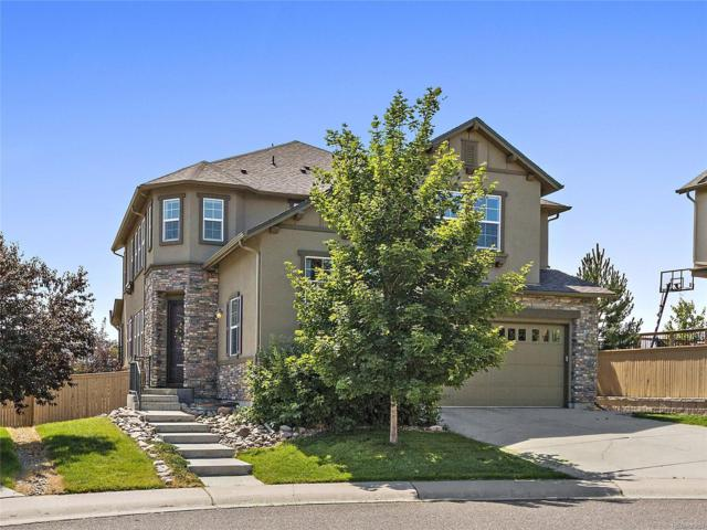 10718 Pinewalk Way, Highlands Ranch, CO 80130 (#9874226) :: The Peak Properties Group