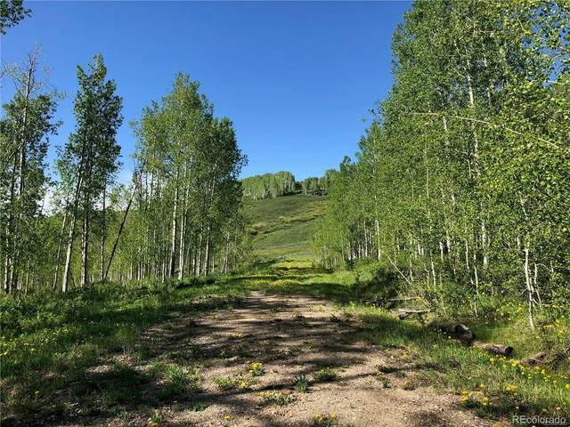 27100 St Louis Place, Clark, CO 80428 (#9876640) :: The Brokerage Group