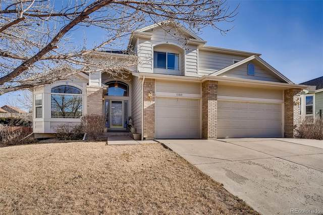 10848 Willow Reed Circle, Parker, CO 80134 (#9877514) :: The Gilbert Group