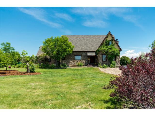 15670 Dallas Street, Brighton, CO 80602 (MLS #9879366) :: 8z Real Estate