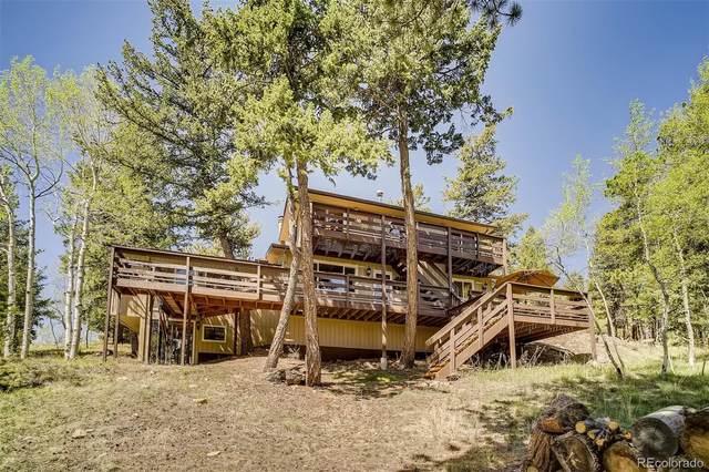 156 Deerhaven Drive, Bailey, CO 80421 (#9880002) :: Venterra Real Estate LLC