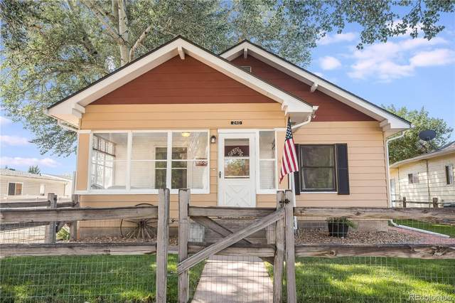 240 E 4th Avenue, Severance, CO 80546 (#9886314) :: The Dixon Group