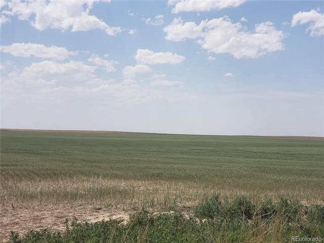 Road 2, Flagler, CO 80815 (MLS #9889608) :: 8z Real Estate