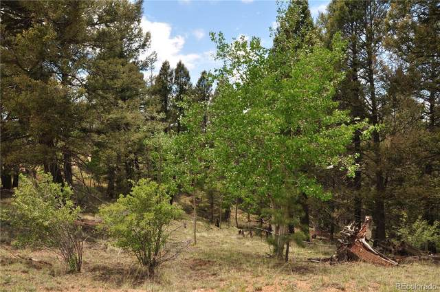 445 Bennett Drive, Cripple Creek, CO 80813 (MLS #9898300) :: Find Colorado