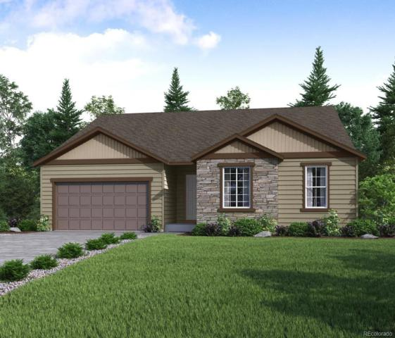 11825 Edenfeld Street, Parker, CO 80134 (#9899121) :: The Griffith Home Team