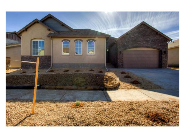 19692 W 95th Place, Arvada, CO 80007 (#9899606) :: The Galo Garrido Group