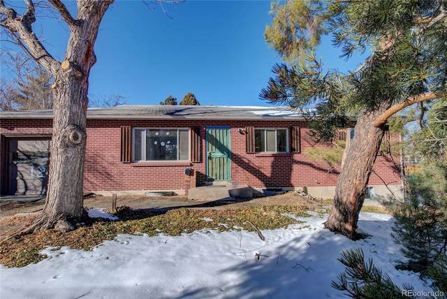 12223 W Maryland Drive, Lakewood, CO 80228 (MLS #9900120) :: 8z Real Estate