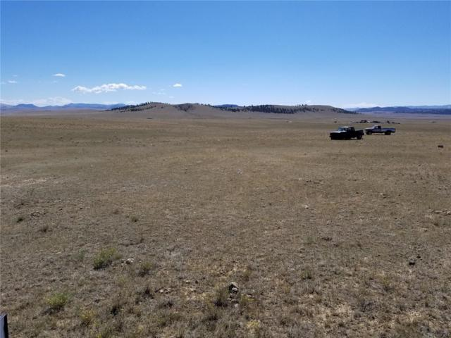 1558 Rio Blanco Road, Hartsel, CO 80449 (#9900768) :: Relevate | Denver