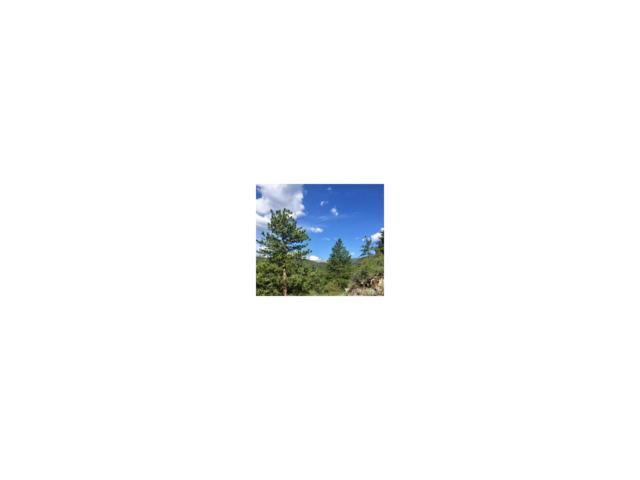 1 Overlooked Way, Idaho Springs, CO 80452 (MLS #9902624) :: 8z Real Estate