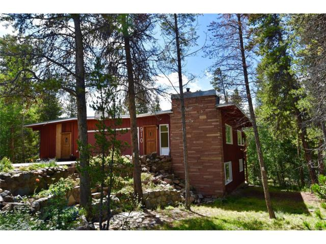 910 Mountain View Drive, Leadville, CO 80461 (#9904995) :: The Peak Properties Group