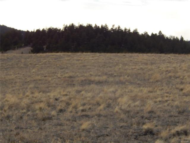 10004 Ranch Road, Hartsel, CO 80449 (MLS #9905011) :: 8z Real Estate